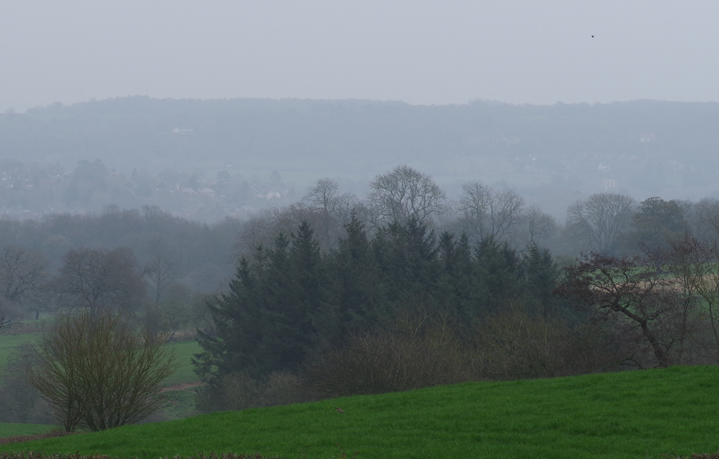 Derbyshire in the Rain